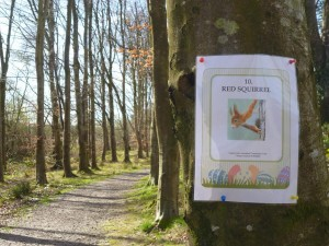 Easter wildlife trail