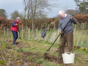 Volunteers tidying up the loch side